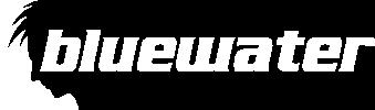 Bluewater Full Funnel Marketing Agency Logo White
